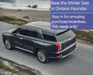 Beat the winter sale
